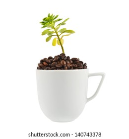Green plant growing from the ceramic cup full of coffee beans isolated over white background