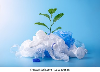Green plant grows among plastic garbage. Bottles and bags on blue background. Concept of environmental protection and waste sorting. Place for text