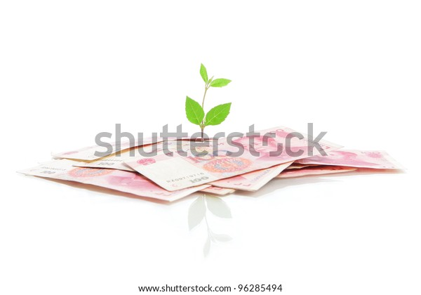 Green plant leaf growing on money (China money) isolated on white background