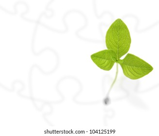 Green plant on white puzzle background.