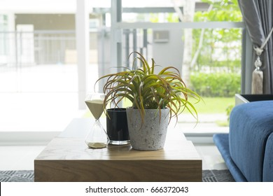 green plant pot on table in living room - Shutterstock ID 666372043