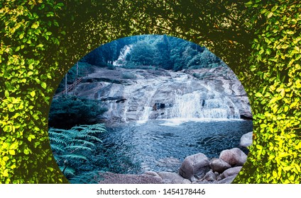 green plant and waterfall   ,abstract  spring nature wallpaper background
