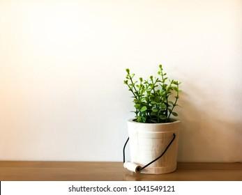Green plant in a white flowerpot on a wooden desk
