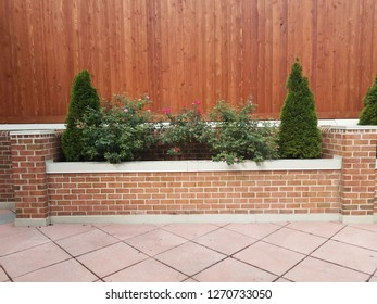 green plants with flowers and wood wall and square tiles
