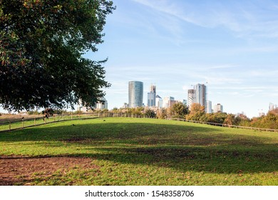 green plants in Mudchute Park and Farm with modern buildings cityscape