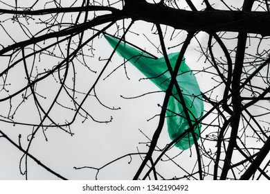Green plastic bag hooked on tree branches. Nature ecology problem and environmental pollution concept
