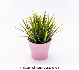 Green plastic decorative flower in a pink plastic pot is on a white background