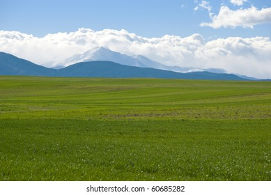 Green plowed farm field in early spring on the Colorado prairie with misty view of Long's Peak in the distance.