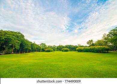 Green public park meadow blue sky for leisure landscape
