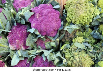 green and purple fresh broccoli at the market place with blank price tag
