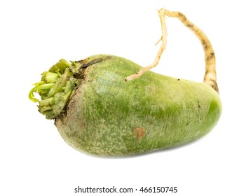 green radish on a white background