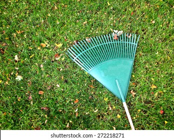green rake on grass lawn with leaves