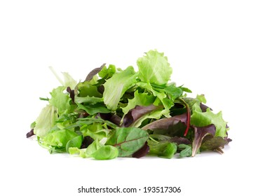 Green and red leaf of lettuce. Isolated on a white background.