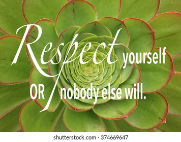 green and red succulent plant with inspirational quote