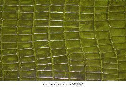 Green Reptile Print Texture Pattern