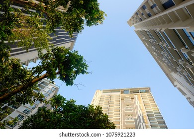 Green residential suburb area house with reflections view from bottom to top