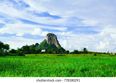 Green Rice Field with Mountains Background under Blue Sky,Phatthalung Thailand - Shutterstock ID 778180291