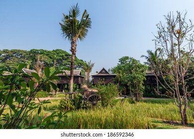 Green rice field in the villa built from rice barn