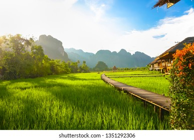Green rice fields, mountains, wooden walkway, a beautiful sightseeing of Vang Vieng, Laos