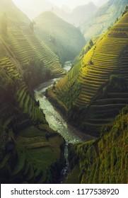 Green Rice fields on terraced in Muchangchai, Vietnam Rice fields prepare the harvest at Northwest Vietnam