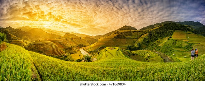 Green Rice fields on terraced in Muchangchai, Vietnam Rice fields prepare the harvest at Northwest Vietnam.Vietnam landscapes.