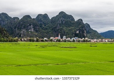 Green rice fields and Phong Nha city, Vietnam