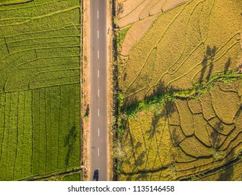 Green rice terrace field with line pattern and cross country road in aerial photography top view; Yogyakarta, Indonesia - 15 July 2018