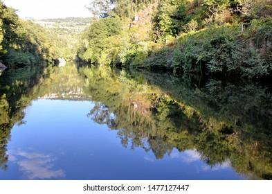 Green riverbanks around the river Douro