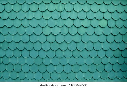Green roof texture pattern. Close up roof.