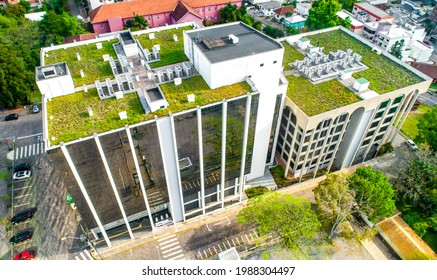 The green roof in the top of building