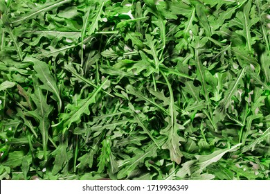 green rucola leaves texture / background