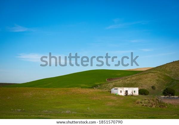 green-rural-landscape-abandoned-house-60