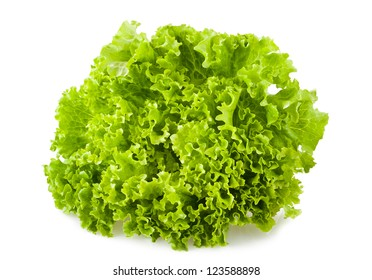 green salad isolated on white