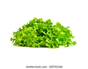 green salad on white background