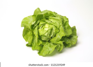 Green salat isolated