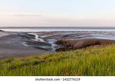 green salt marsh and mud flat with canal at the wadden sea of the north sea coast near Fedderwardersiel, district Wesermarsch (Germany) on a summer evening during low tide