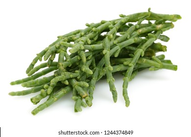 Green samphire or salicornia plants isolated on white background