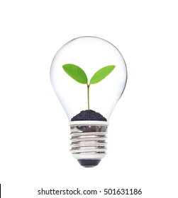 Green saving concept for wealth and environment