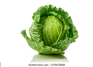 Green Savoy cabbage
