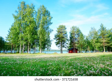 Green scenery of trees and meadow near the lake in summer, Finland