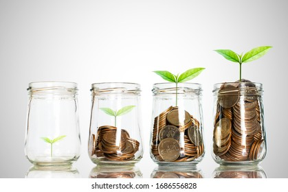 green seed growth on coins in bottle with white background. money saving. business investment successful growing concept.