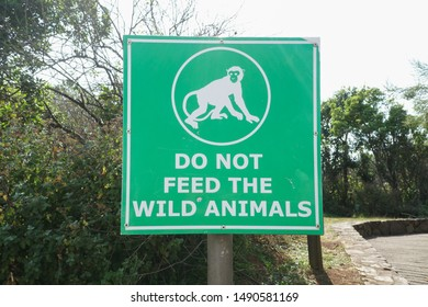green sign board warning or instruction with message or text reading do not feed the wild animals at Gods Window in Mpumalanga, South Africa
