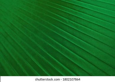 green silky fabric for backround