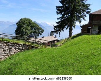 Green slope of the Pilatus mountain with small rural houses, green trees, mountains and blue sky in background, Switzerland