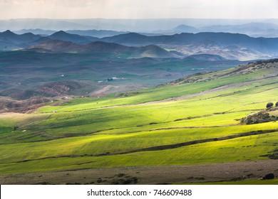 Green slopes of Ifrane at the Moyen Atlas, Morocco
