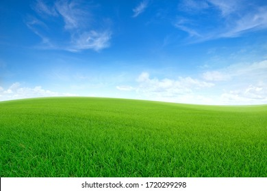 Green sloping meadows with blue sky and clouds background.
