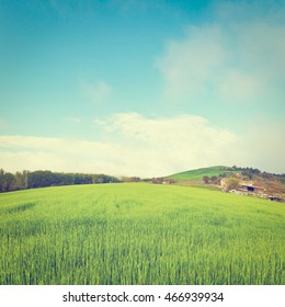 Green Sloping Meadows of Tuscany, Retro Effect