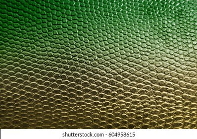 Green snake skin texture background