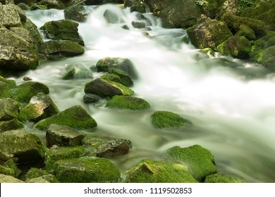 green soft water