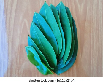 Green soursop leaves on the floor